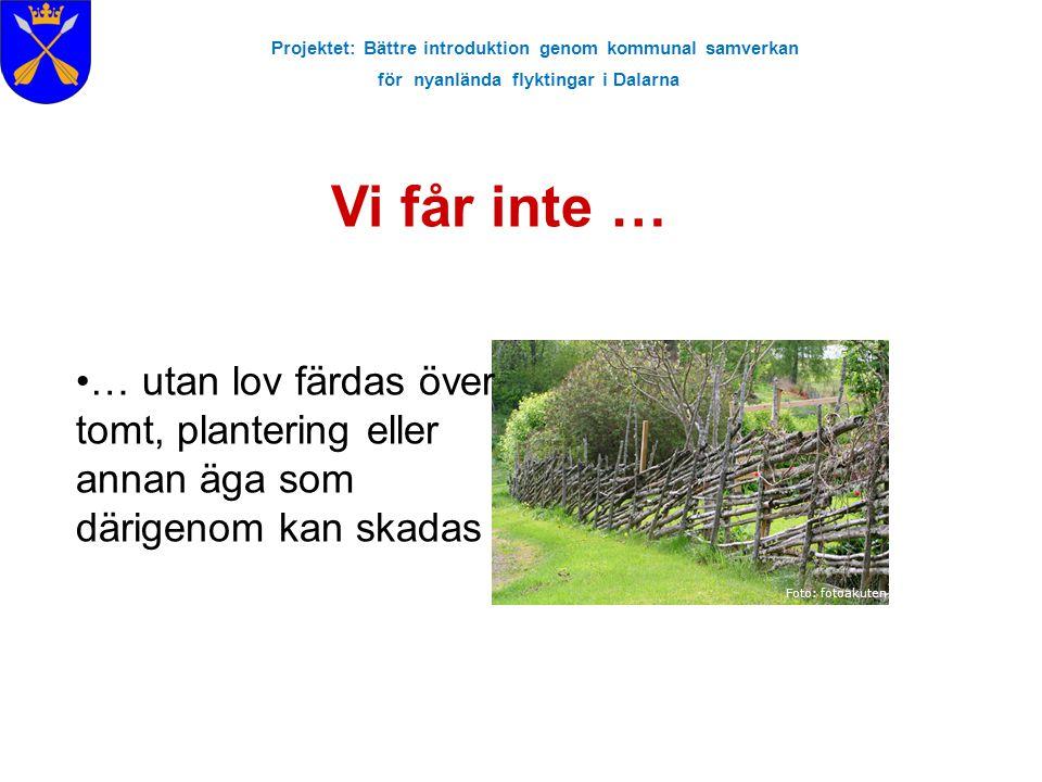 Projektet: Bättre introduktion genom kommunal samverkan för nyanlända flyktingar i Dalarna Vi får inte … Foto: fotoakuten … utan lov färdas över tomt,
