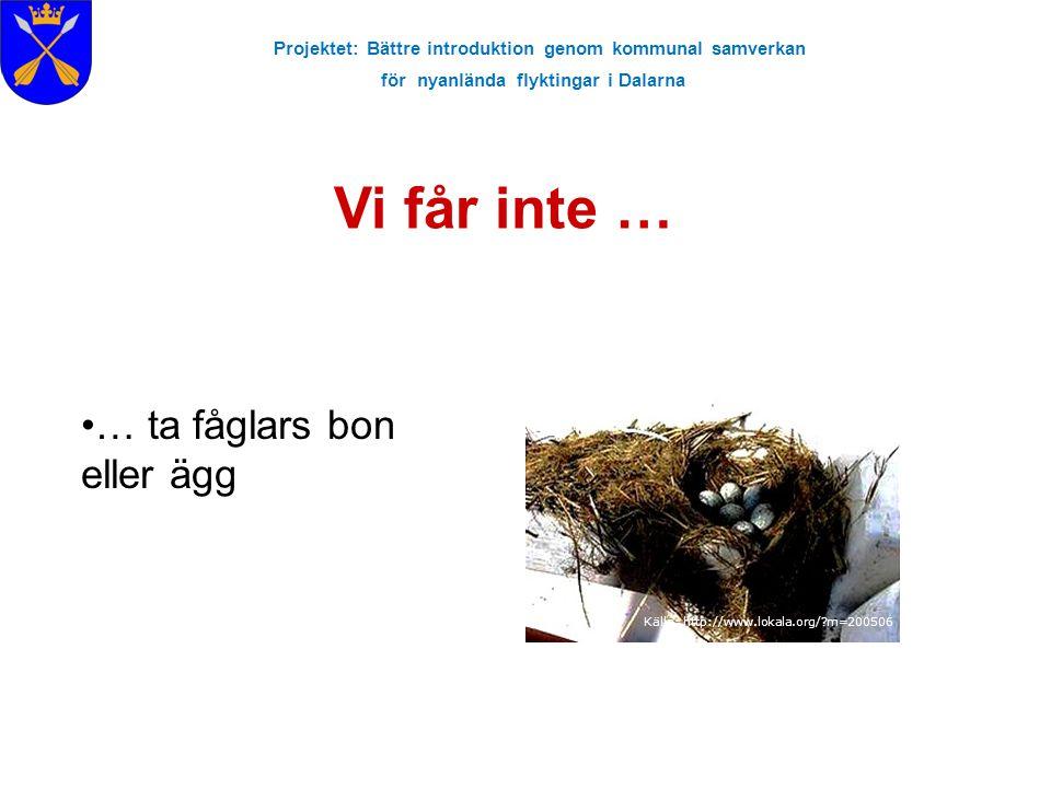 Projektet: Bättre introduktion genom kommunal samverkan för nyanlända flyktingar i Dalarna Vi får inte … Källa: http://www.lokala.org/?m=200506 … ta f
