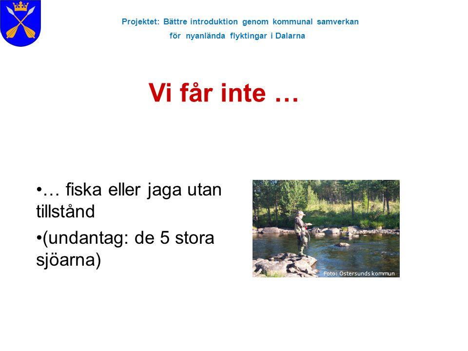 Projektet: Bättre introduktion genom kommunal samverkan för nyanlända flyktingar i Dalarna Vi får inte … Foto: Östersunds kommun … fiska eller jaga ut