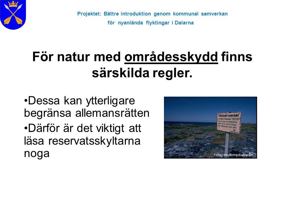 Projektet: Bättre introduktion genom kommunal samverkan för nyanlända flyktingar i Dalarna För natur med områdesskydd finns särskilda regler. Foto: mu