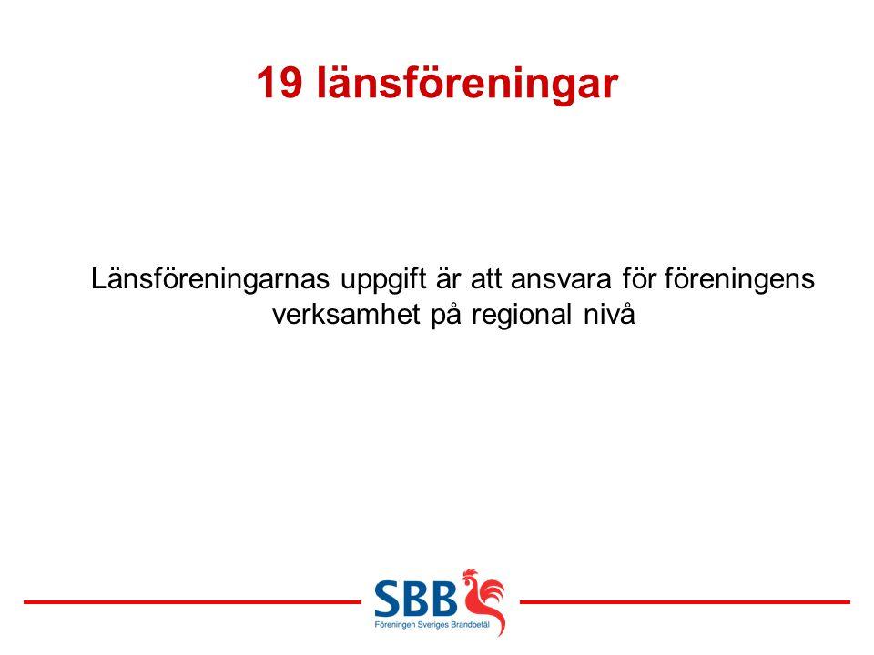19 länsföreningar Länsföreningarnas uppgift är att ansvara för föreningens verksamhet på regional nivå