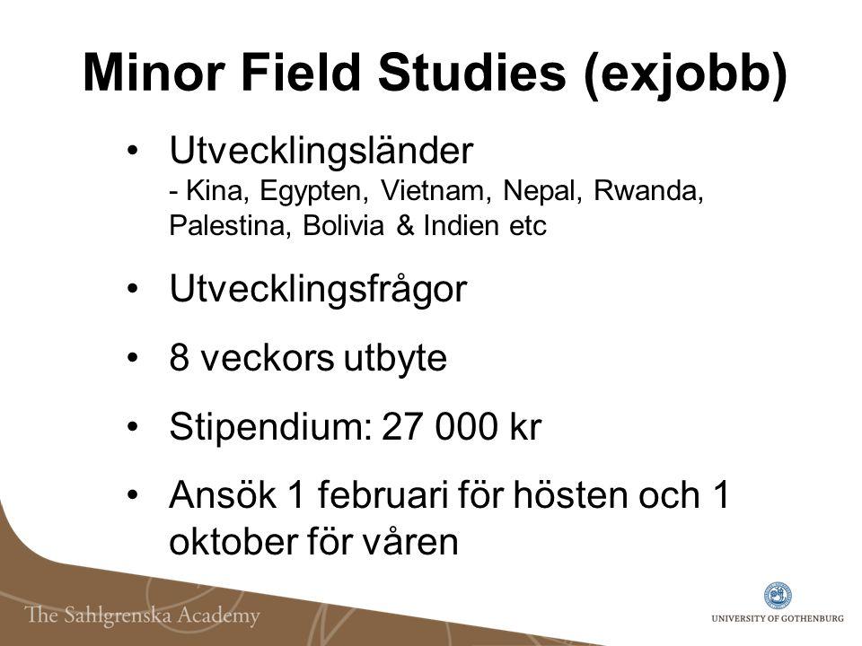 Minor Field Studies (exjobb) Utvecklingsländer - Kina, Egypten, Vietnam, Nepal, Rwanda, Palestina, Bolivia & Indien etc Utvecklingsfrågor 8 veckors ut