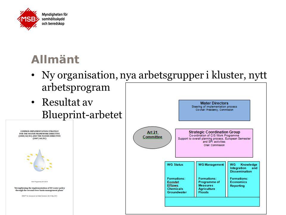 Allmänt Ny organisation, nya arbetsgrupper i kluster, nytt arbetsprogram Resultat av Blueprint-arbetet