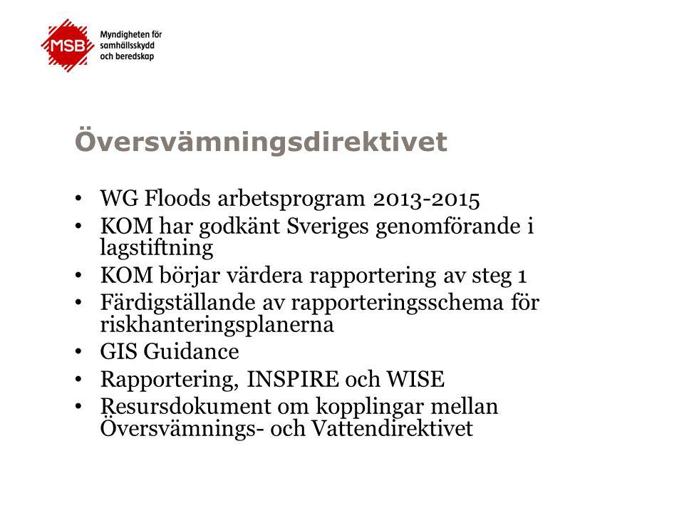 Översvämningsdirektivet WG Floods arbetsprogram 2013-2015 KOM har godkänt Sveriges genomförande i lagstiftning KOM börjar värdera rapportering av steg 1 Färdigställande av rapporteringsschema för riskhanteringsplanerna GIS Guidance Rapportering, INSPIRE och WISE Resursdokument om kopplingar mellan Översvämnings- och Vattendirektivet