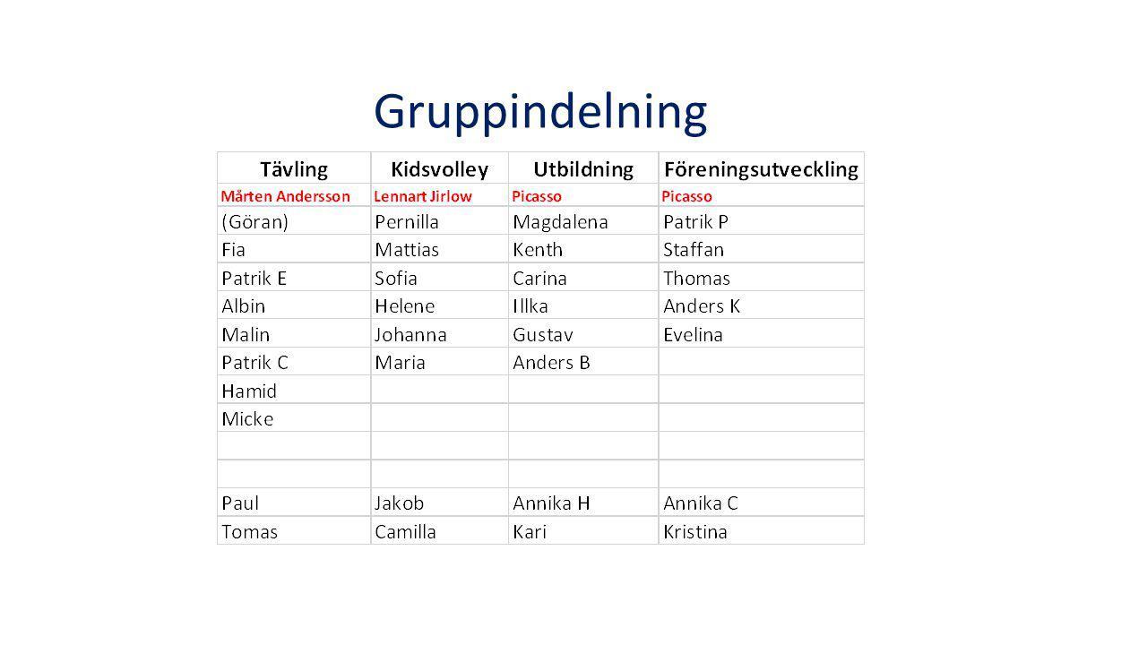 Gruppindelning