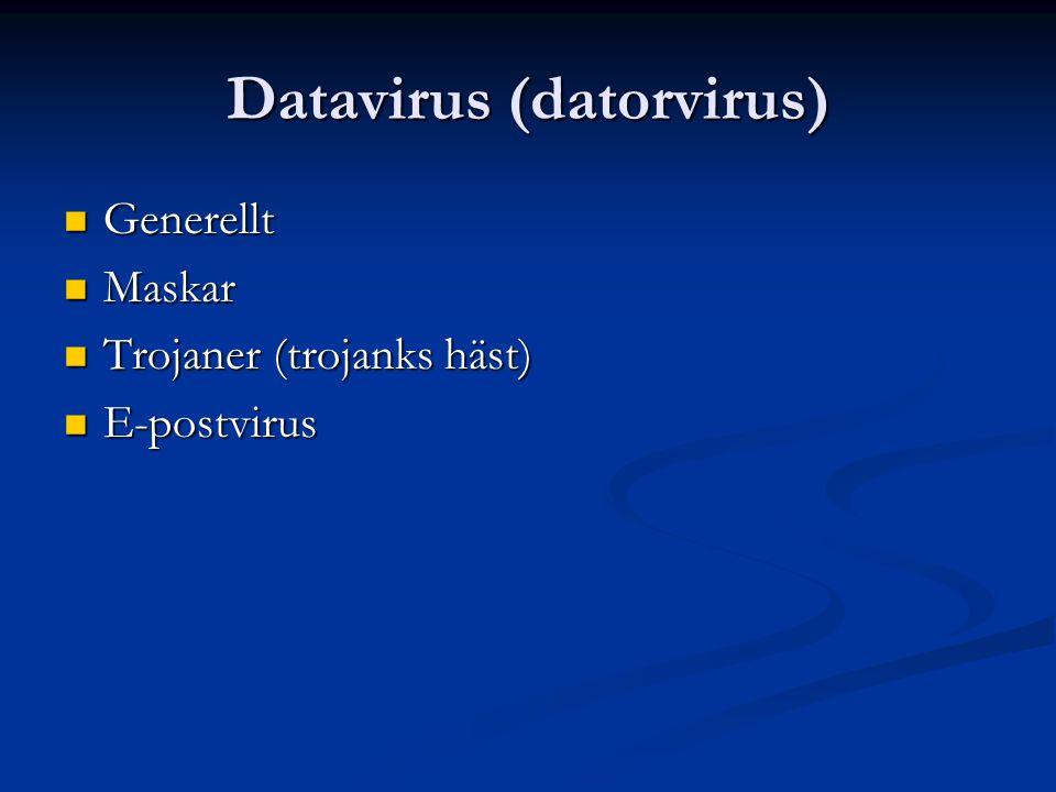 Datavirus (datorvirus) Generellt Generellt Maskar Maskar Trojaner (trojanks häst) Trojaner (trojanks häst) E-postvirus E-postvirus