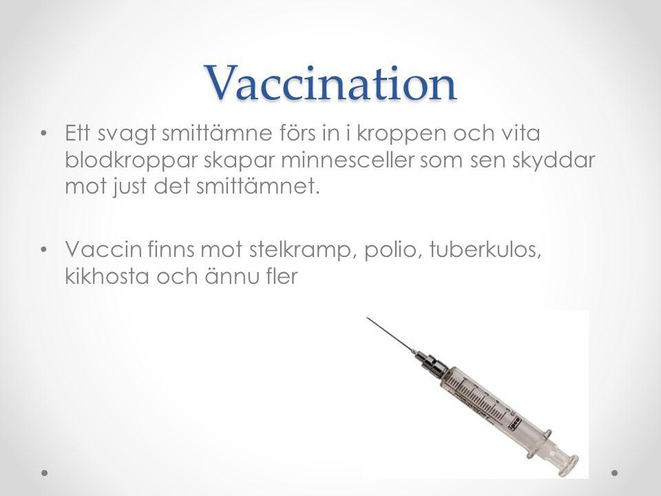 Vaccination Ett svagt smittämne förs in i kroppen och vita blodkroppar skapar minnesceller som sen skyddar mot just det smittämnet. Vaccin finns mot s