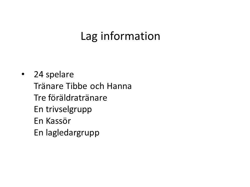 Lag information 24 spelare Tränare Tibbe och Hanna Tre föräldratränare En trivselgrupp En Kassör En lagledargrupp