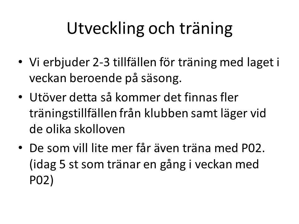 Heltidstränare Vi i lagledningen ser gärna att de kommer in en tränare som tar hand om träningar och matcher under 2015/16.