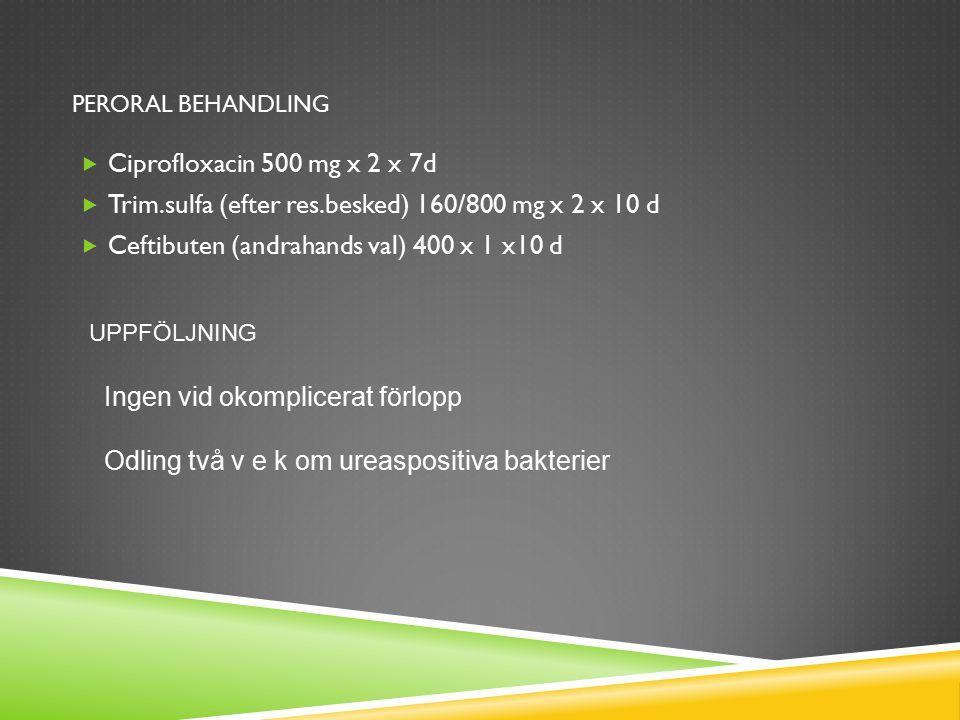 PERORAL BEHANDLING  Ciprofloxacin 500 mg x 2 x 7d  Trim.sulfa (efter res.besked) 160/800 mg x 2 x 10 d  Ceftibuten (andrahands val) 400 x 1 x10 d U