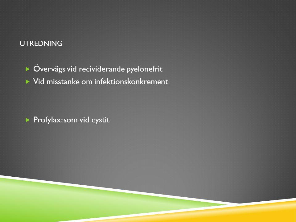 UTREDNING  Övervägs vid recividerande pyelonefrit  Vid misstanke om infektionskonkrement  Profylax: som vid cystit
