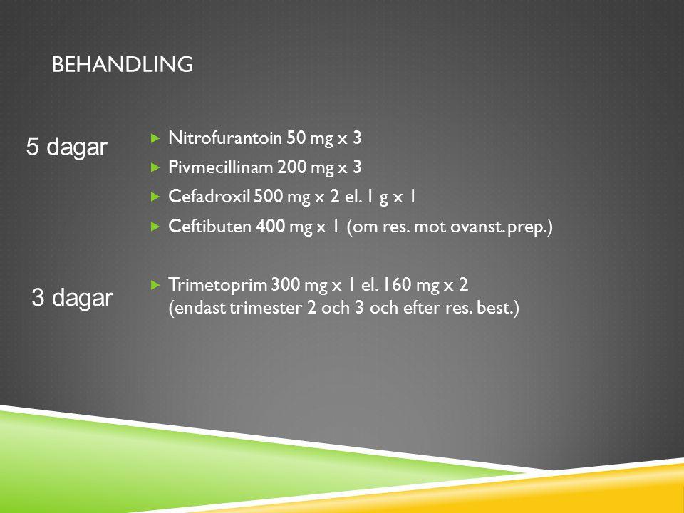 BEHANDLING  Nitrofurantoin 50 mg x 3  Pivmecillinam 200 mg x 3  Cefadroxil 500 mg x 2 el. 1 g x 1  Ceftibuten 400 mg x 1 (om res. mot ovanst. prep