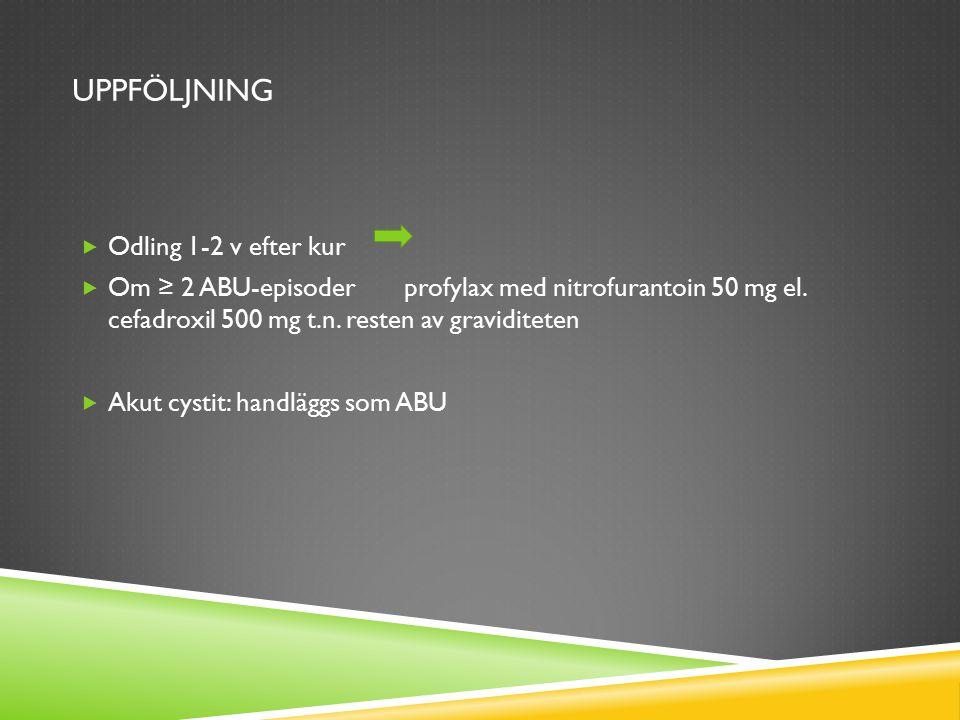 UPPFÖLJNING  Odling 1-2 v efter kur  Om ≥ 2 ABU-episoder profylax med nitrofurantoin 50 mg el. cefadroxil 500 mg t.n. resten av graviditeten  Akut