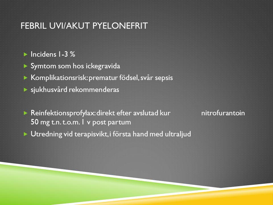 FEBRIL UVI/AKUT PYELONEFRIT  Incidens 1-3 %  Symtom som hos ickegravida  Komplikationsrisk: prematur födsel, svår sepsis  sjukhusvård rekommendera