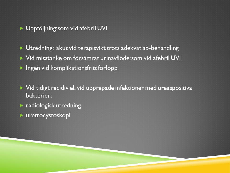  Uppföljning: som vid afebril UVI  Utredning: akut vid terapisvikt trots adekvat ab-behandling  Vid misstanke om försämrat urinavflöde: som vid afe