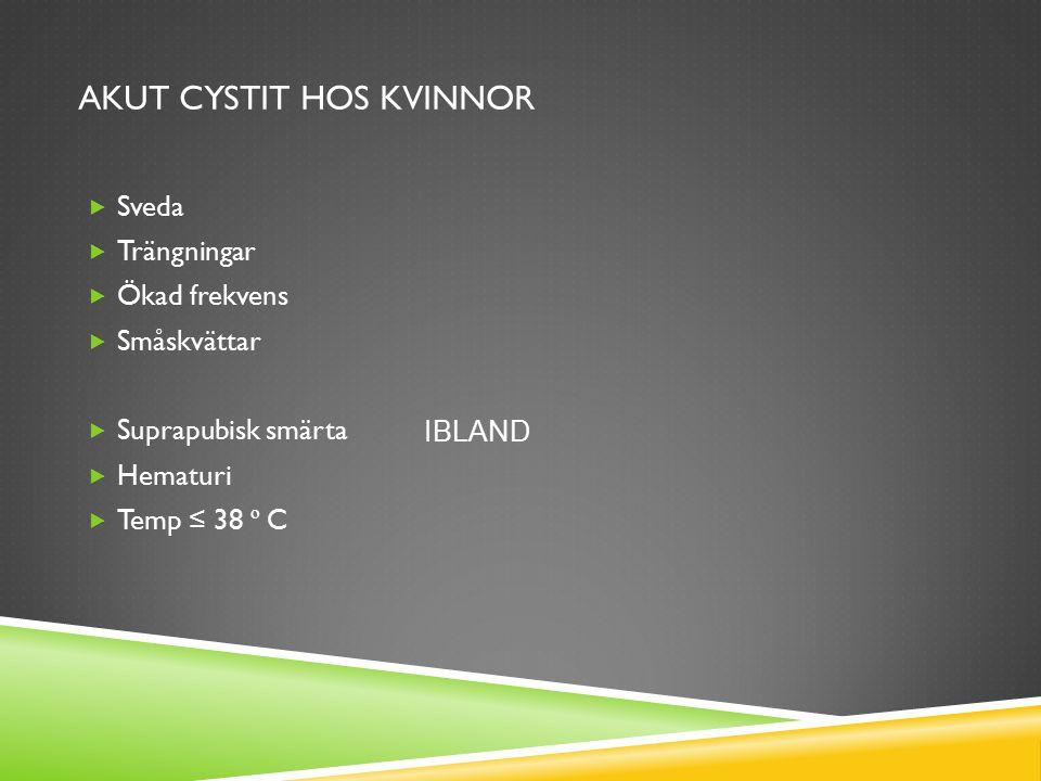  UVI-rutin, förslag