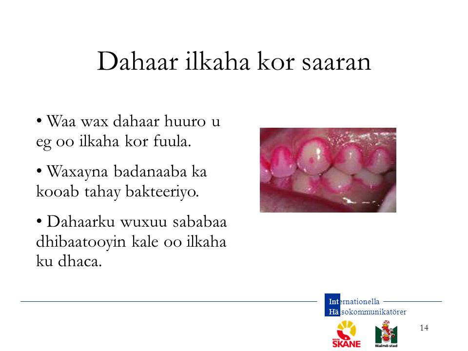 Internationella Hälsokommunikatörer 14 Dahaar ilkaha kor saaran Waa wax dahaar huuro u eg oo ilkaha kor fuula. Waxayna badanaaba ka kooab tahay baktee