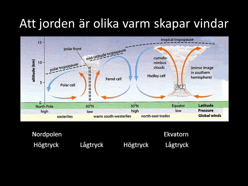 Att jorden är olika varm skapar vindar NordpolenEkvatorn Högtryck Lågtryck Högtryck Lågtryck