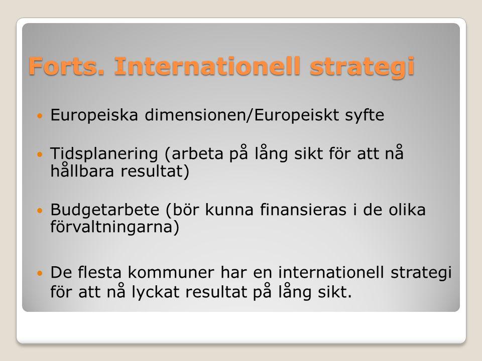 Forts. Internationell strategi Europeiska dimensionen/Europeiskt syfte Tidsplanering (arbeta på lång sikt för att nå hållbara resultat) Budgetarbete (