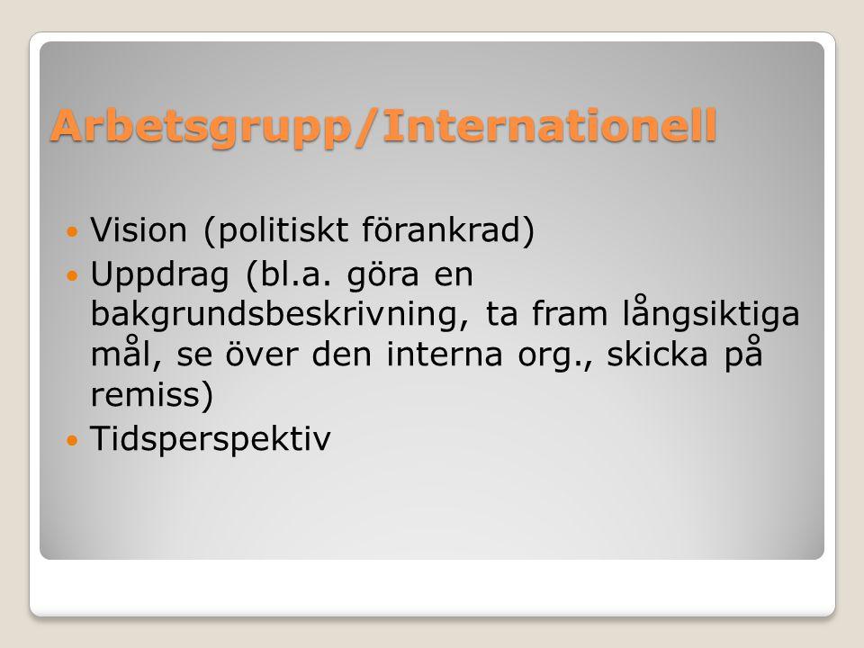 Arbetsgrupp/Internationell Vision (politiskt förankrad) Uppdrag (bl.a. göra en bakgrundsbeskrivning, ta fram långsiktiga mål, se över den interna org.