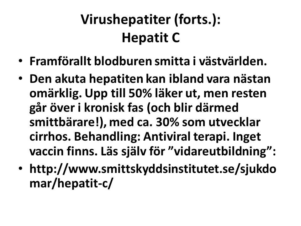 Virushepatiter (forts.): Hepatit C Framförallt blodburen smitta i västvärlden. Den akuta hepatiten kan ibland vara nästan omärklig. Upp till 50% läker