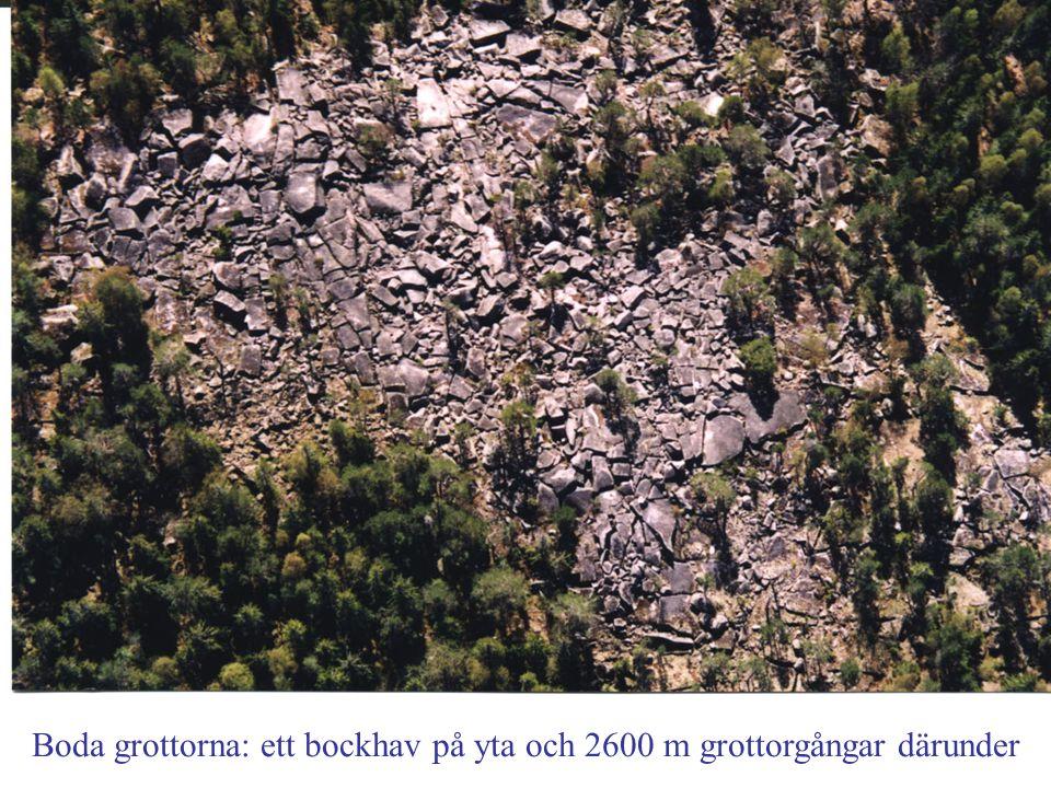 Boda grottorna: ett bockhav på yta och 2600 m grottorgångar därunder