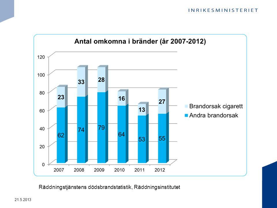 21.5.2013 Räddningstjänstens dödsbrandstatistik, Räddningsinstitutet