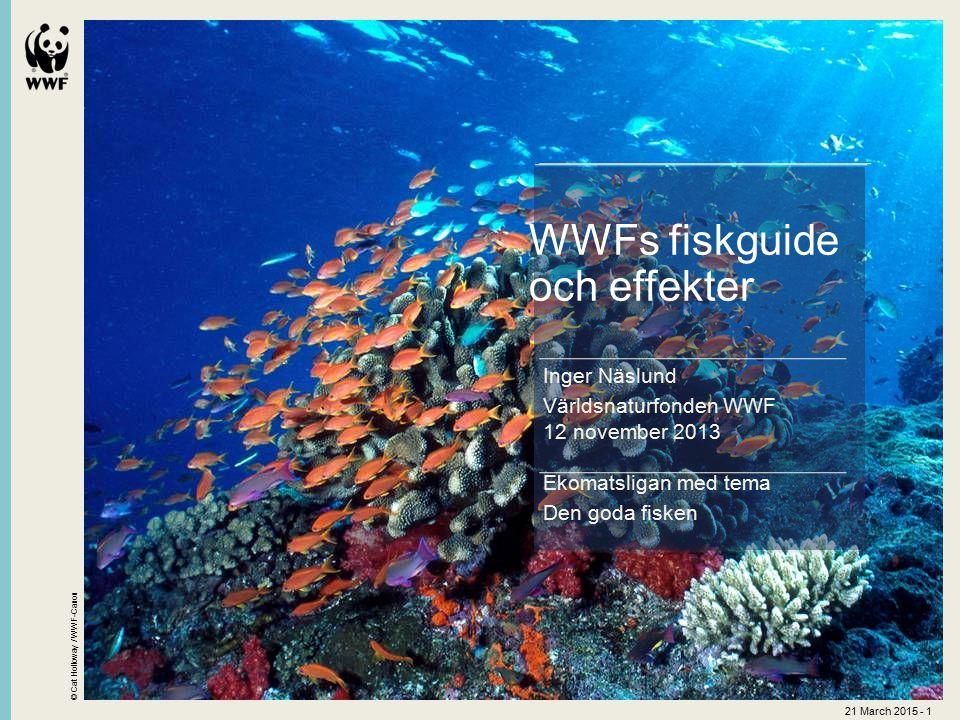 © Cat Holloway / WWF-Canon 21 March 2015 - 1 Ekomatsligan med tema Den goda fisken WWFs fiskguide och effekter Inger Näslund Världsnaturfonden WWF 12 november 2013