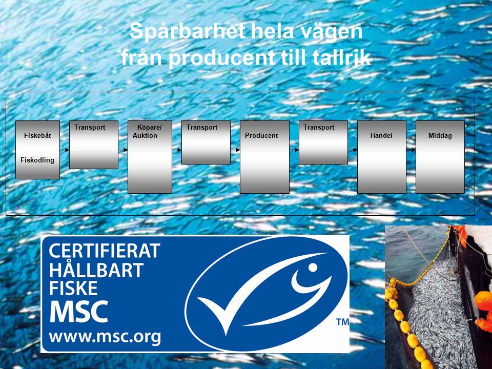 Spårbarhet hela vägen från producent till tallrik Fiskebåt Fiskodling TransportKöpare/ Auktion Transport ProducentHandel Transport Middag