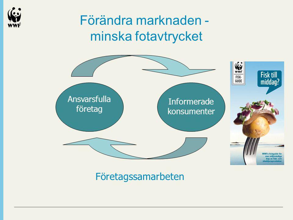 Förändra marknaden - minska fotavtrycket Ansvarsfulla företag Informerade konsumenter Företagssamarbeten