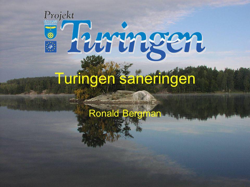 Turingen saneringen Ronald Bergman