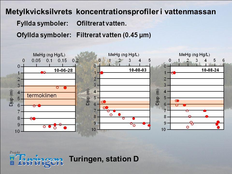 Metylkvicksilvrets koncentrationsprofiler i vattenmassan termoklinen Fyllda symboler: Ofiltrerat vatten.