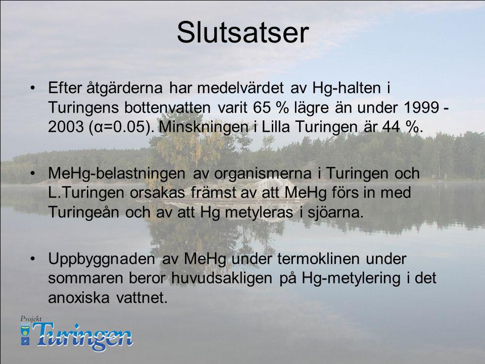 Slutsatser Efter åtgärderna har medelvärdet av Hg-halten i Turingens bottenvatten varit 65 % lägre än under 1999 - 2003 (α=0.05).