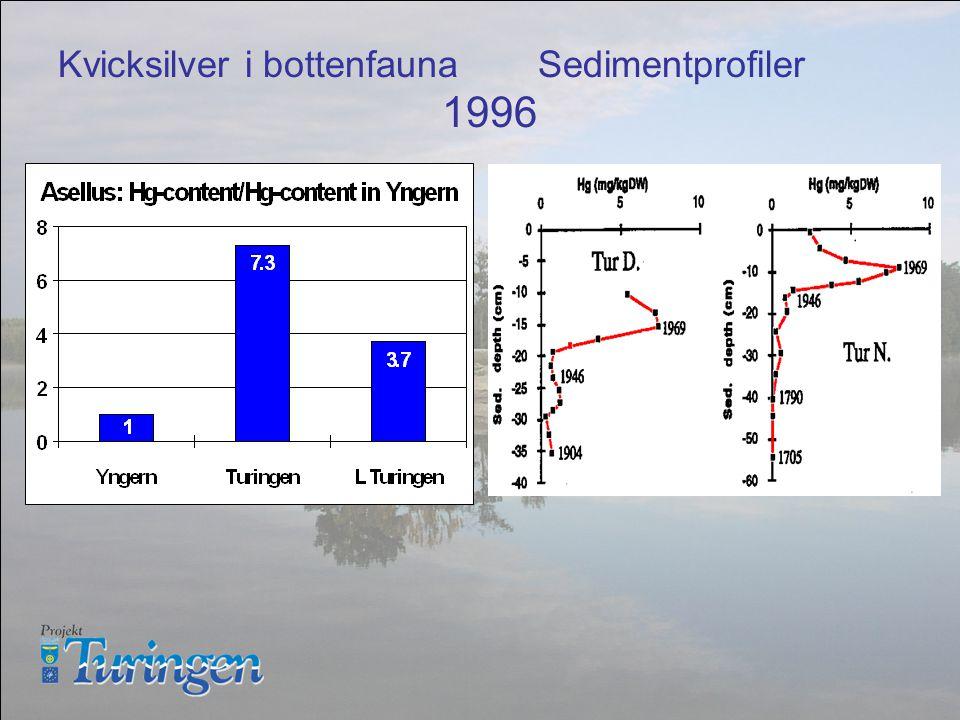 Kvicksilver i bottenfaunaSedimentprofiler 1996