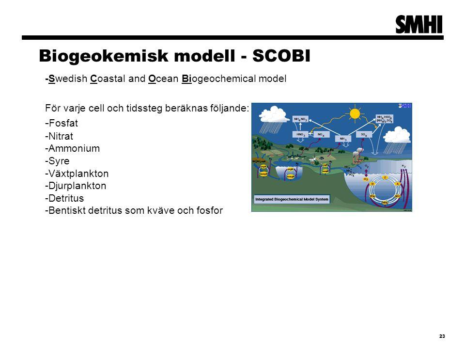 23 Biogeokemisk modell - SCOBI -Swedish Coastal and Ocean Biogeochemical model För varje cell och tidssteg beräknas följande: - Fosfat -Nitrat -Ammonium -Syre -Växtplankton -Djurplankton -Detritus -Bentiskt detritus som kväve och fosfor