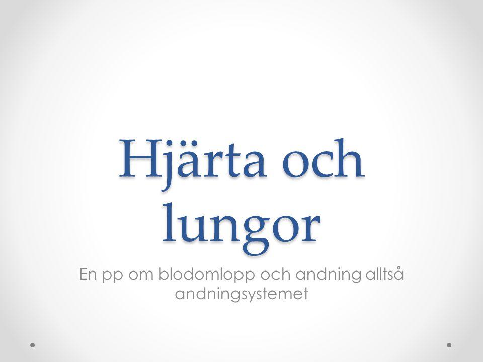 Hjärta och lungor En pp om blodomlopp och andning alltså andningsystemet