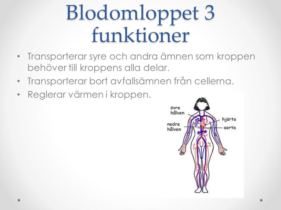 Blodomloppet 3 funktioner Transporterar syre och andra ämnen som kroppen behöver till kroppens alla delar. Transporterar bort avfallsämnen från celler