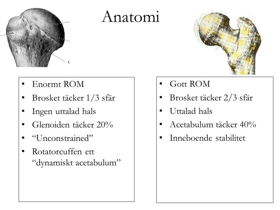 Anatomi Enormt ROM Brosket täcker 1/3 sfär Ingen uttalad hals Glenoiden täcker 20% Unconstrained Rotatorcuffen ett dynamiskt acetabulum Gott ROM Brosket täcker 2/3 sfär Uttalad hals Acetabulum täcker 40% Inneboende stabilitet