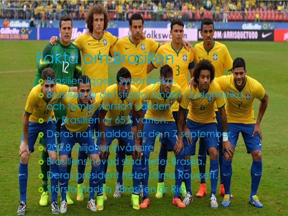 Fakta om Brasilien  Brasilien ligger i Sydamerika.  Brasillien är det största landet i Sydamerika och femte största i världen.  Av Brasillien är 65