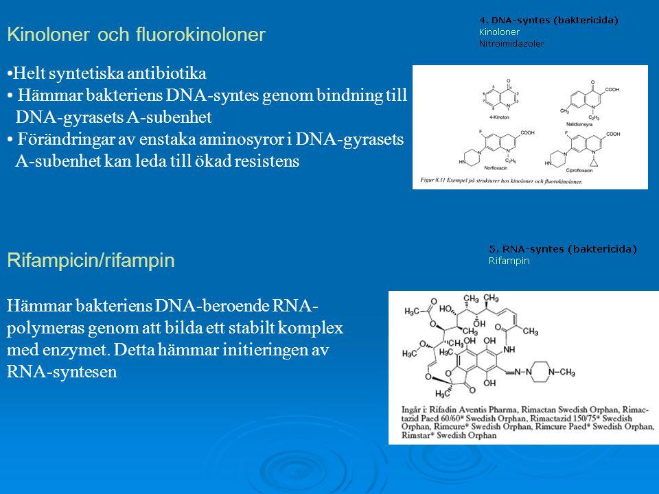 Kinoloner och fluorokinoloner Helt syntetiska antibiotika Hämmar bakteriens DNA-syntes genom bindning till DNA-gyrasets A-subenhet Förändringar av ens