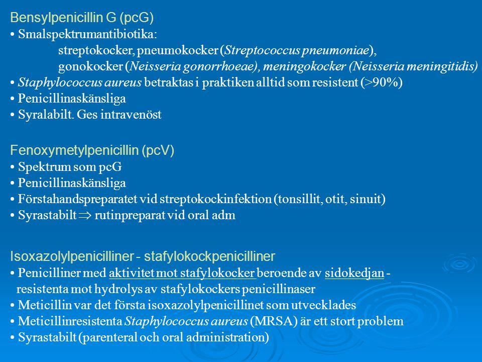Bensylpenicillin G (pcG) Smalspektrumantibiotika: streptokocker, pneumokocker (Streptococcus pneumoniae), gonokocker (Neisseria gonorrhoeae), meningok