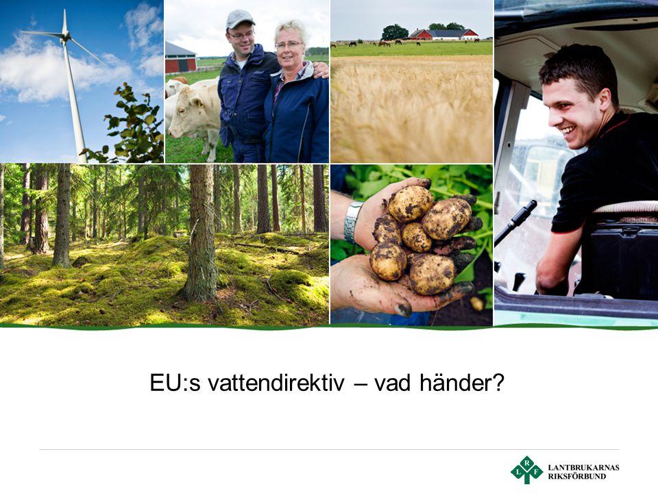 Sid 2 | Lantbrukarnas Riksförbund Tidtabell för EU:s vattendirektiv 2004 2005- 2007 Karaktärisering av vattenmiljöer Fördjupad analys Första översiktlig beskrivning Påverkansanalys, undantag, status- och riskbedömning 2006- 2007 Övervakningsprogram fastställs och startar 2008- 2009 Åtgärdsprogram och förvaltningsplan fastställs 2010Finansieringssystem fastställsFörorenaren betalar (PPP) 2012Åtgärder genomförs 2015Miljömålet uppfyllsEv.