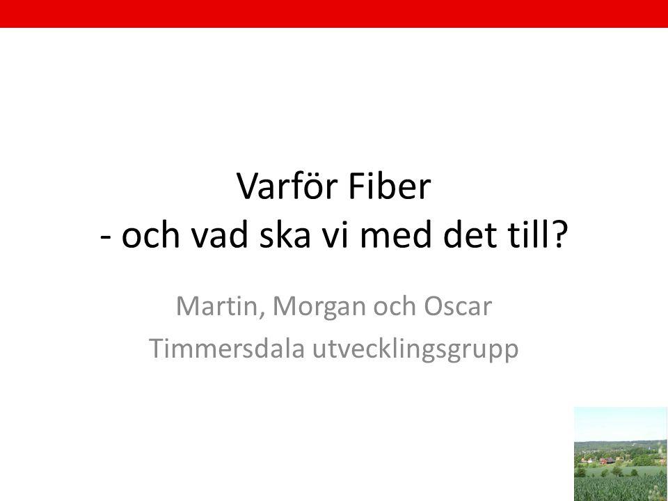 Varför Fiber - och vad ska vi med det till? Martin, Morgan och Oscar Timmersdala utvecklingsgrupp