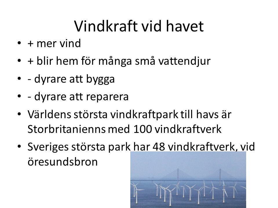 Vindkraft vid havet + mer vind + blir hem för många små vattendjur - dyrare att bygga - dyrare att reparera Världens största vindkraftpark till havs ä