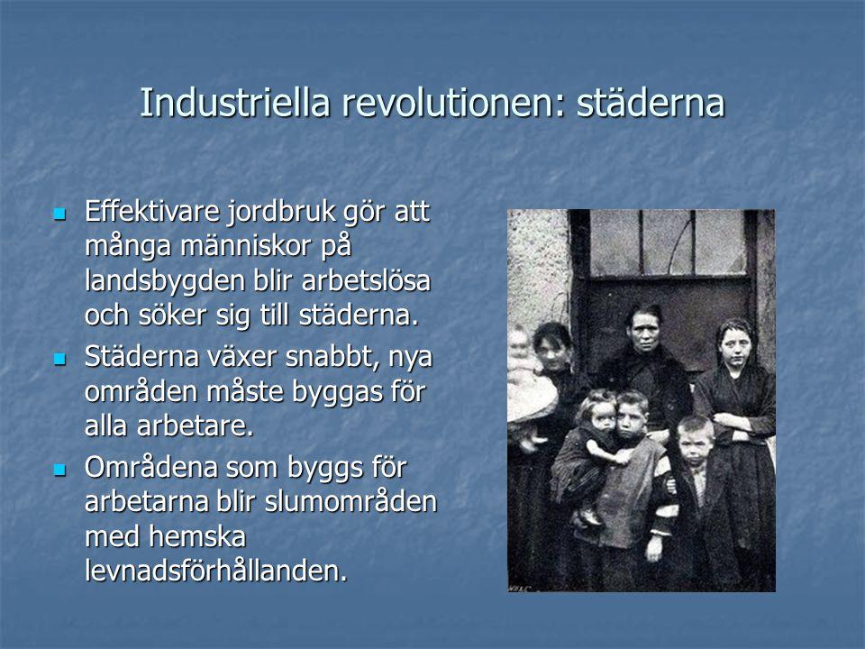 Industriella revolutionen: städerna Effektivare jordbruk gör att många människor på landsbygden blir arbetslösa och söker sig till städerna.