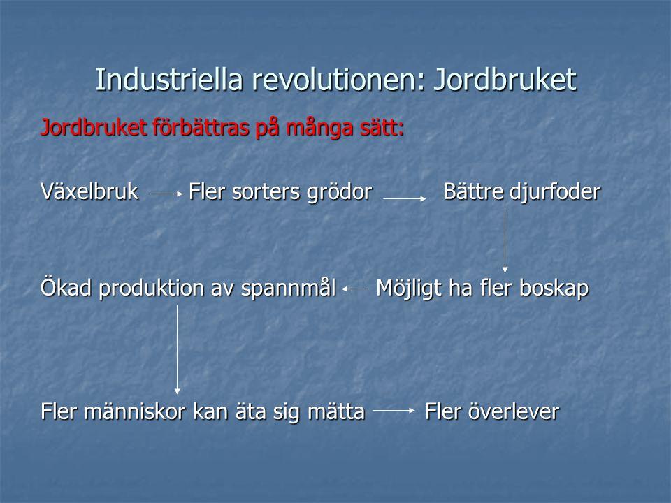 Industriella revolutionen: Jordbruket Jordbruket förbättras på många sätt: Växelbruk Fler sorters grödorBättre djurfoder Ökad produktion av spannmålMöjligt ha fler boskap Fler människor kan äta sig mätta Fler överlever