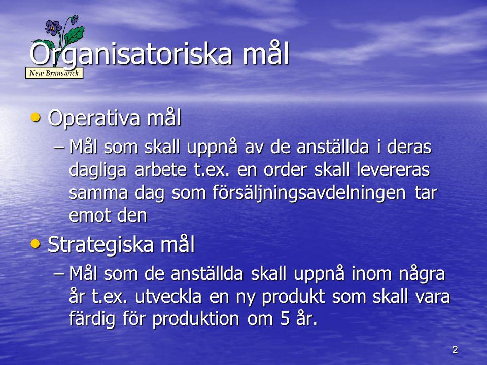 3 Mål för nedanstående organisationer BageriKemiskt lab.