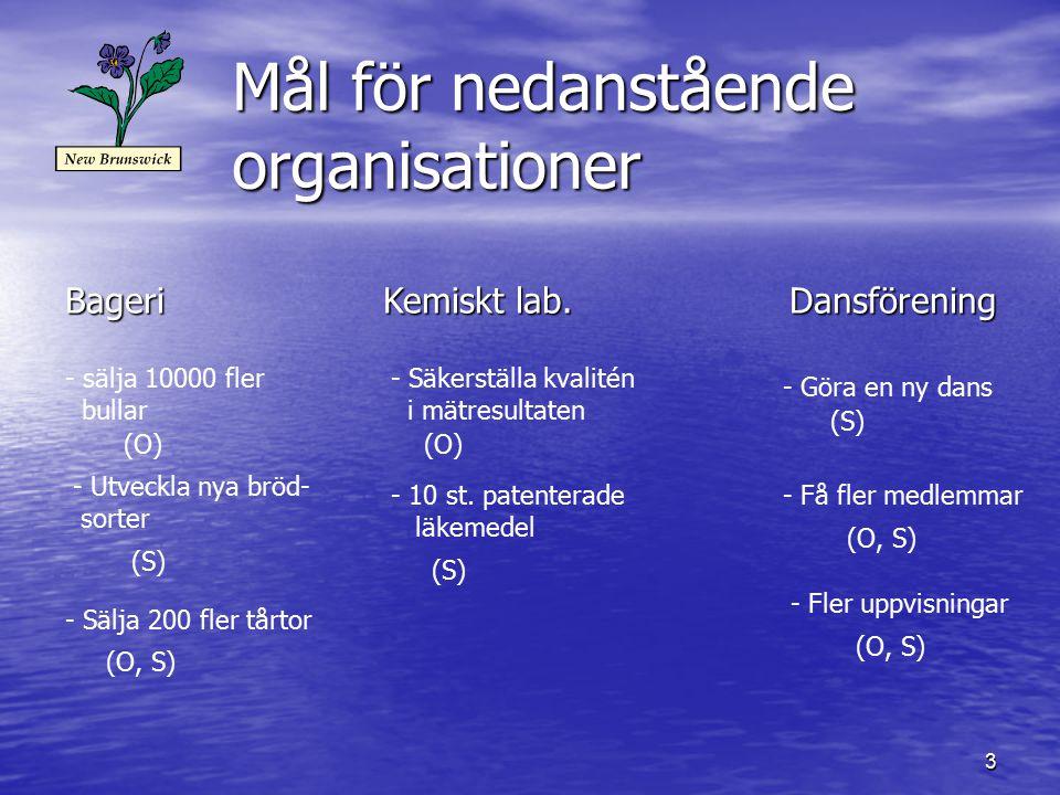 3 Mål för nedanstående organisationer BageriKemiskt lab. Dansförening - sälja 10000 fler bullar - Utveckla nya bröd- sorter - Sälja 200 fler tårtor -