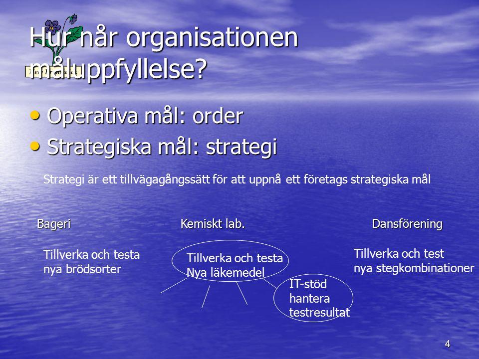 4 Hur når organisationen måluppfyllelse? Operativa mål: order Operativa mål: order Strategiska mål: strategi Strategiska mål: strategi BageriKemiskt l