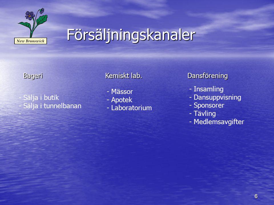 6 Försäljningskanaler BageriKemiskt lab.Dansförening - Sälja i butik - Sälja i tunnelbanan - - Mässor - Apotek - Laboratorium - Insamling - Dansuppvisning - Sponsorer - Tävling - Medlemsavgifter